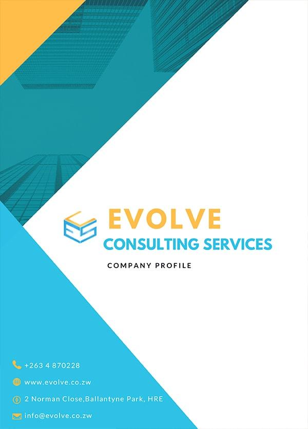Evolve Consulting Company Profile